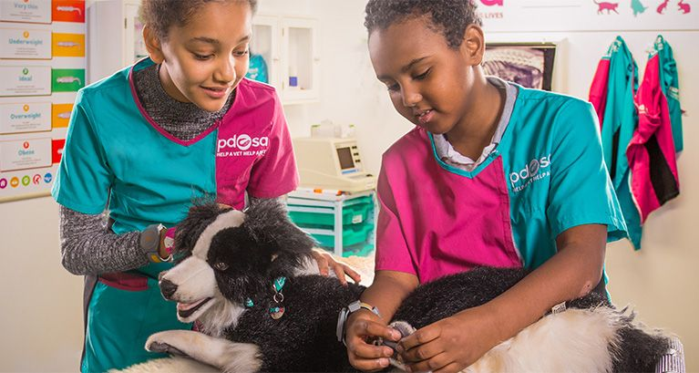 Pet Wellbeing Centre